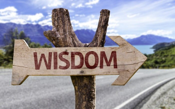 road sign: the way to wisdom